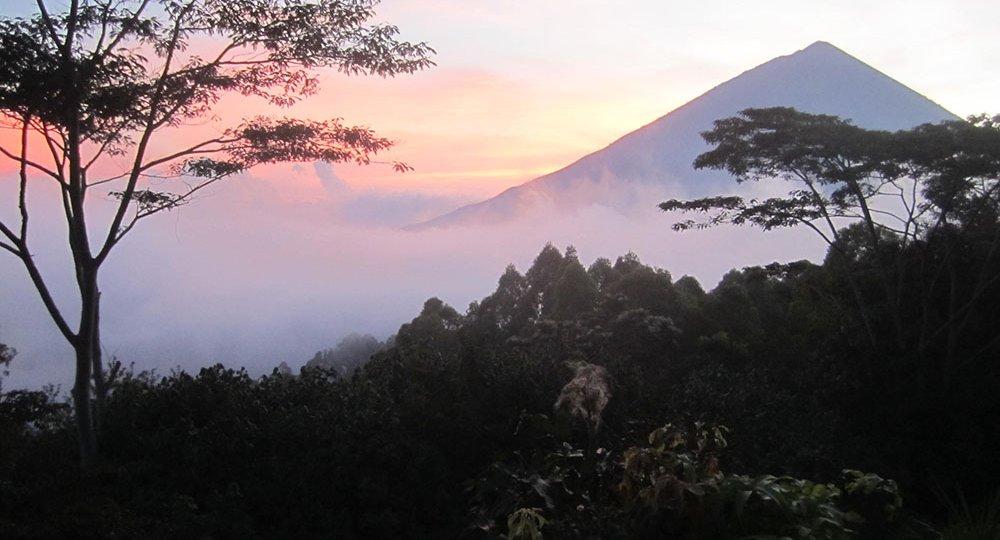 Manu Lamu view